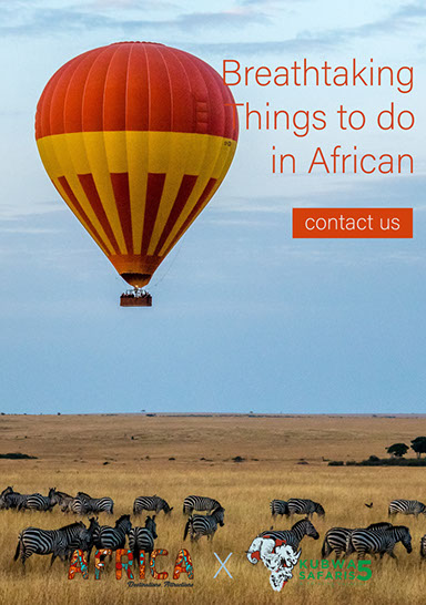 Breathtaking things to do while on a Visit in Africa, Visit Africa!