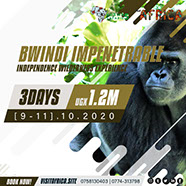 3Day Bwindi Impenetrable Gorilla Trekking Tour Experience - October, 2020.