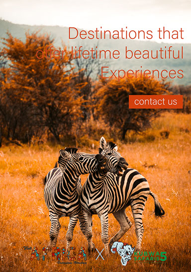 A Visit to Africa awaits! Destinations of beautiful experiences