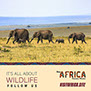 Visit Africa is all about Wildlife. Africa is the home of most of the wildlife in the World