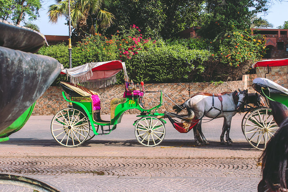 A Caleche in Marrakesh City, a unique transport means to get around the city