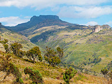An image of  the vegetation and geography of Mount Elgon National Park