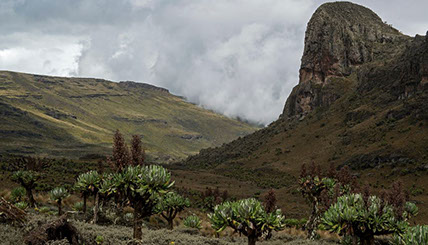 An image of Mont Elgon; Mount Elgon national park's main attraction