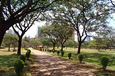 The Central City Park of Nairobi City, Kenya