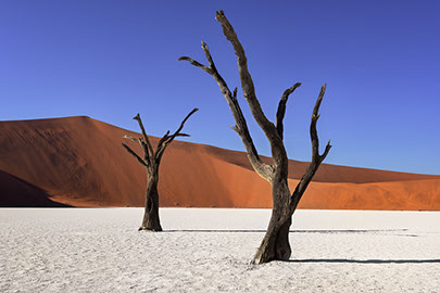 An image of the Namib dersert in Namib-Naukluft Park in Namibia