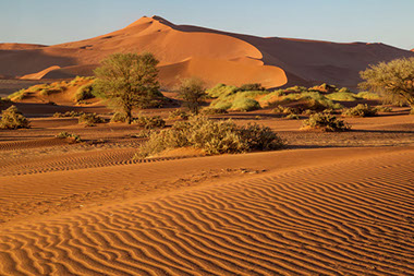 A unique place to be is the Namib-Naukluft Park in the Namib Desert