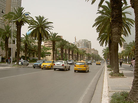 The Street view of Tunis City in Tunisia