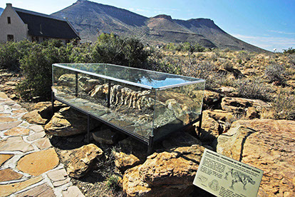 An image of the Karoo national fossil in Karoo National Park, South Africa.
