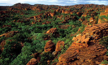An image of beautiful landscape plateaus in Waterberg Plateau Park, Namibia